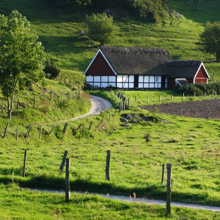 countryside2